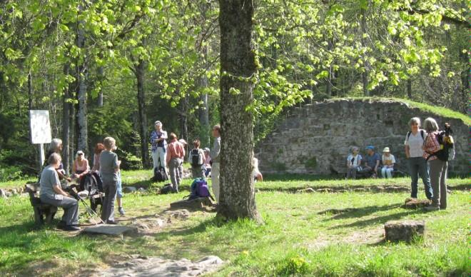 Ruine Altlandenberg