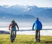 Guided Bike Tours